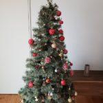 なぜクリスマスにツリーを飾るのか?エネルギー?